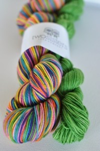 Jelly Beans Skein with Mini